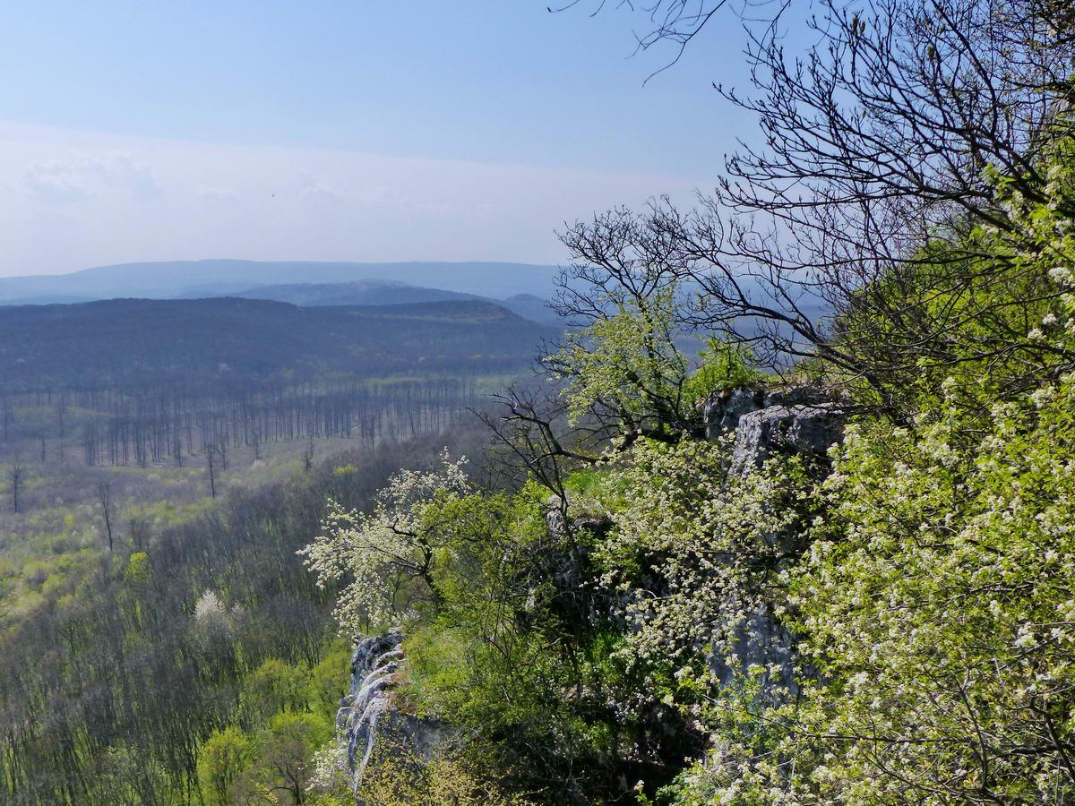 Kilátás a Pes-kő-barlang melletti kilátószikláról dél felé