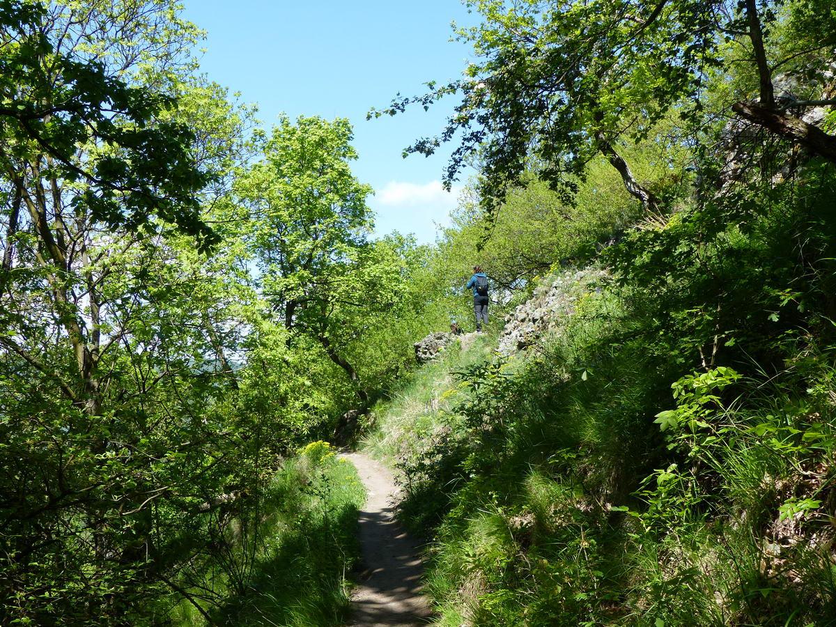 Meredek hegyoldalban vezet gyakorlatilag szintezve a Spartacus-ösvény