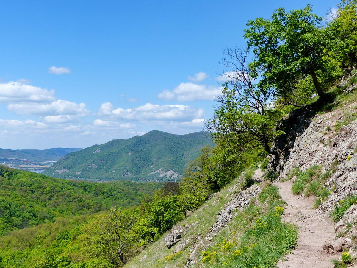 Kilátás a Dunakanyar felé a legszebb kilátópontról