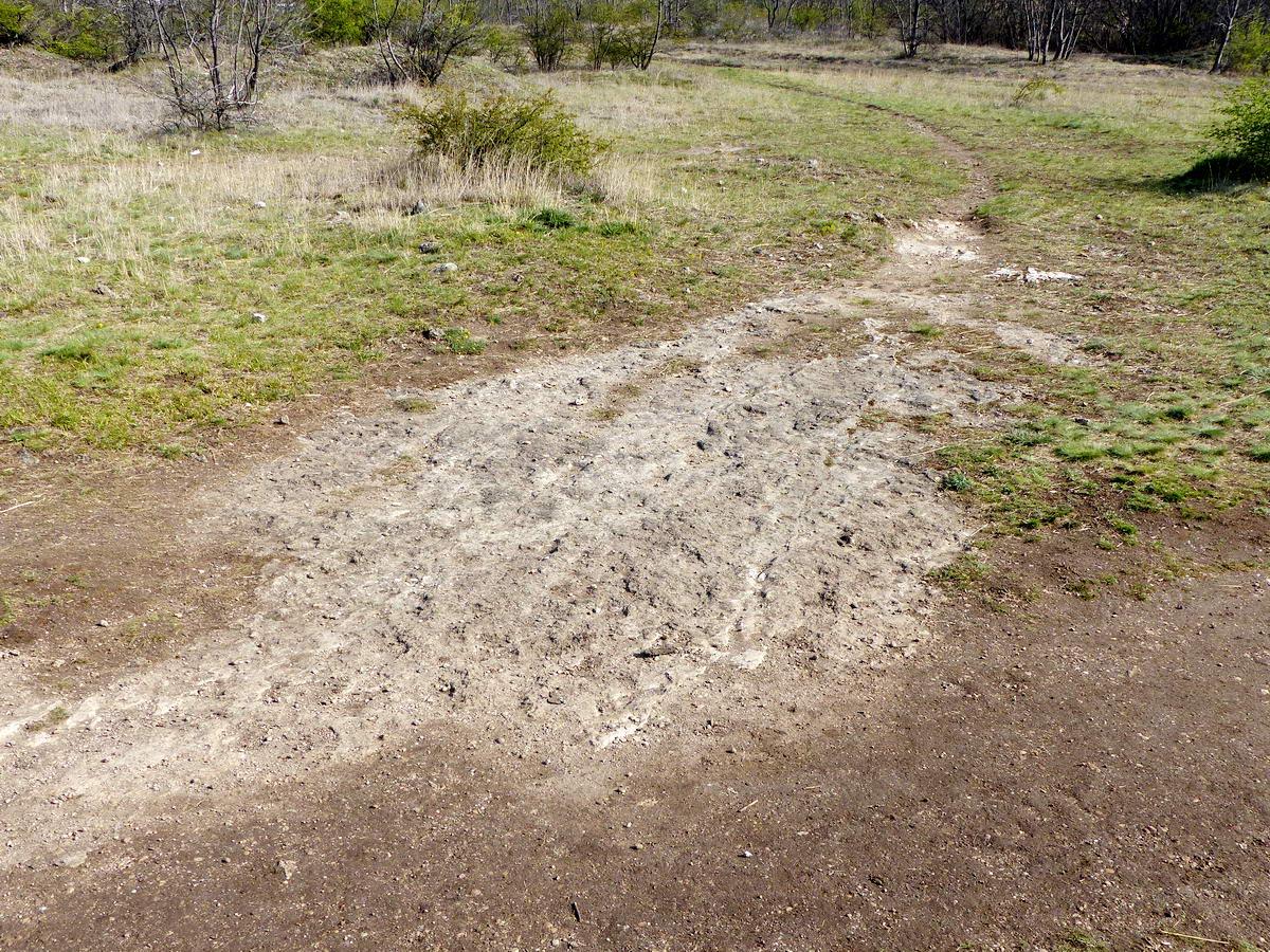 Sok helyen felszínre bukkan a fennsíkot alkotó mészkő