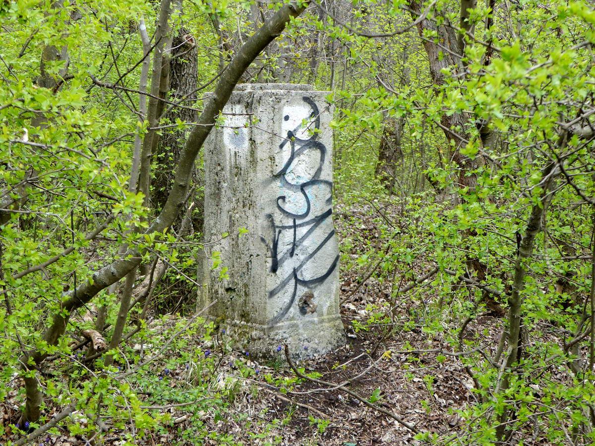 Budapest egyik régi határköve áll rögtön az erdőszélen