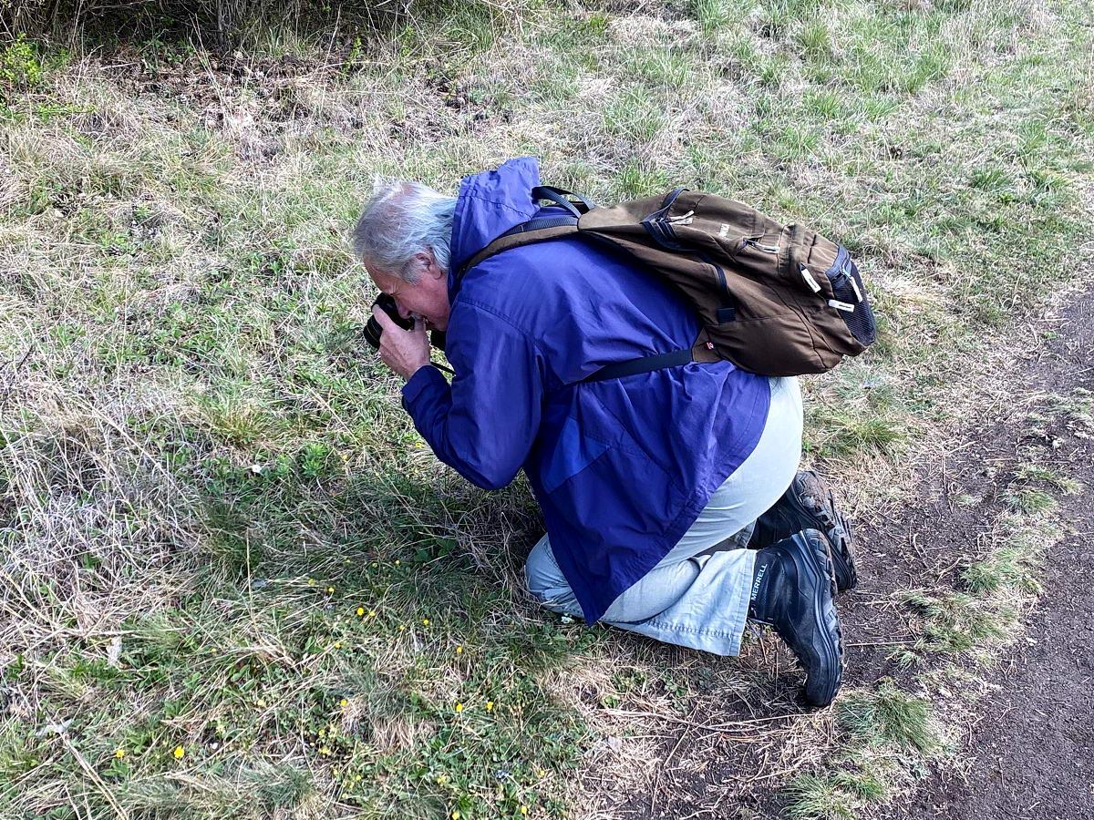 Amikor a hóhért akasztják, vagyis a fényképészt fényképezik, aki éppen a virágzó erdei szamócát igyekszik megörökíteni. A képet a fiam követte el...