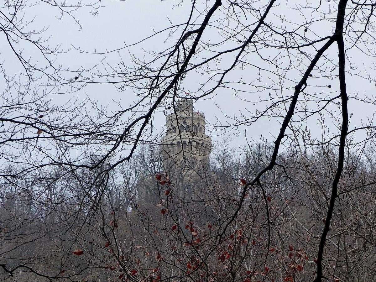 Még van mit kapaszkodni, de már látszik az Erzsébet-kilátó a kopasz faágak között