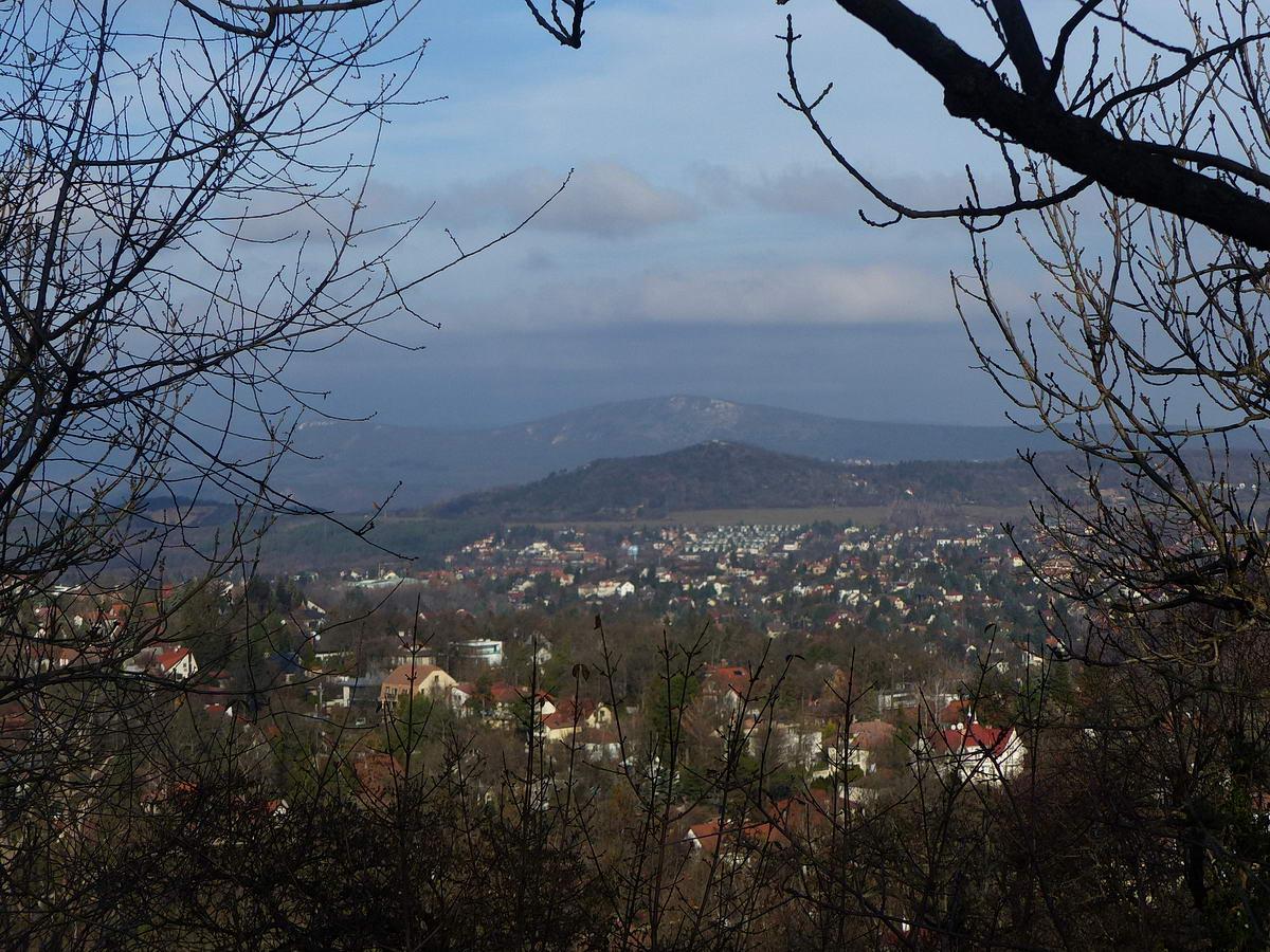 Kilátás a Fekete-fejről (sajnos az autofókusz a faágakat kapta el...). Budaliget és Széphalom házai mögött a Kálvária-hegy (394 m) látható, a háttérben pedig a Nagy-Kevély (534 m) áll