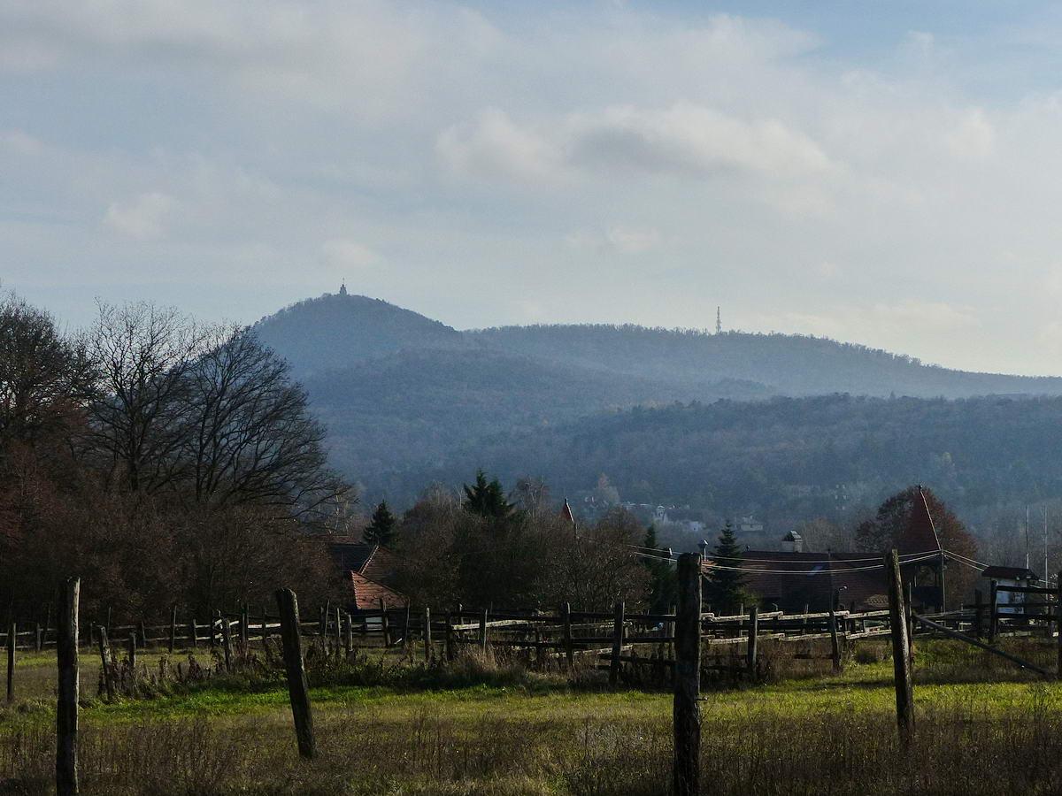 Kilátás Adyligetről a János-hegyre (balra), továbbá a Normafára (jobbra fenn) és a Nagy-Hárs-hegyre (alattuk középen)