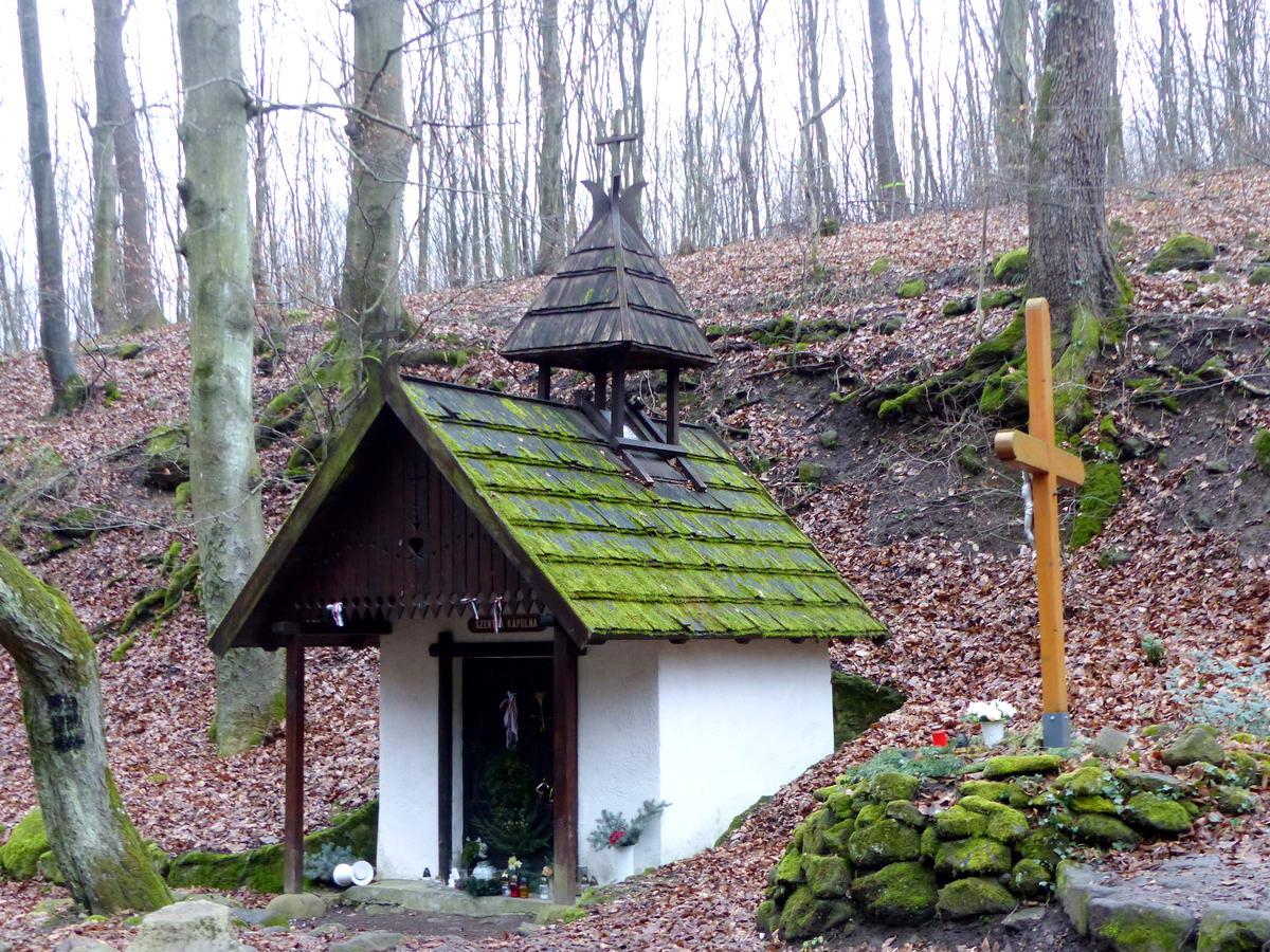 Rövid időre ezen a túrán is megálltam a Szentfa kápolna melletti erdei pihenőnél