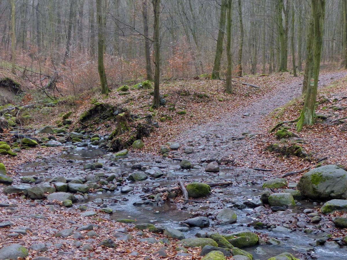 Gázló az itt még bővizű Malom-patakon