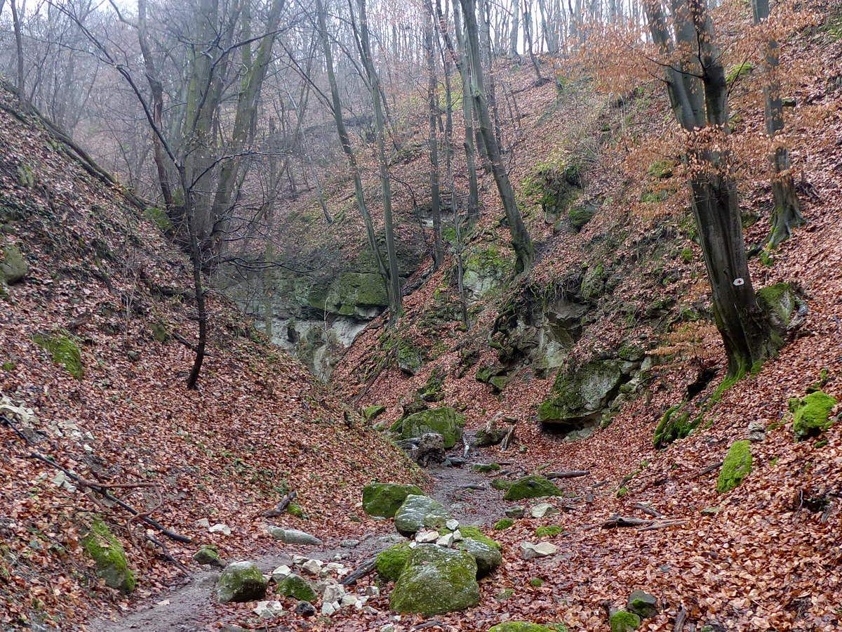 Később feltűntek az első sziklák