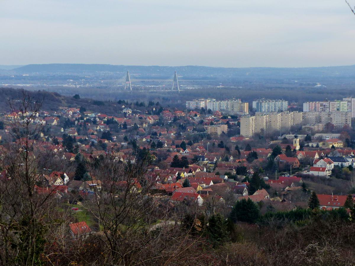 Kilátás a Róka-hegyről Békásmegyerre és a Megyeri Duna hídra
