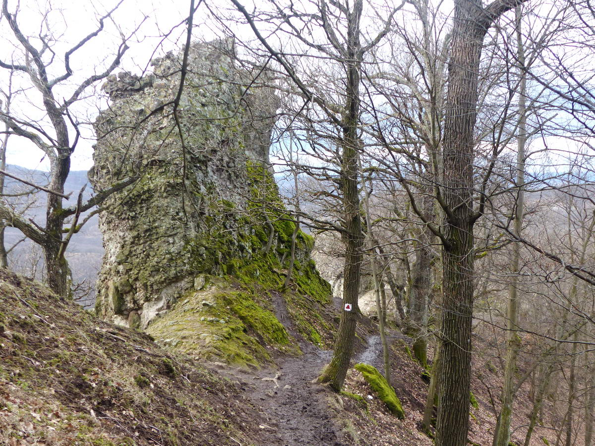 Az Árpád trónját jobbról kerüli meg a sáros, súvadásos ösvény. Jobbra 150 méternyi meredek lejtő húzódik.