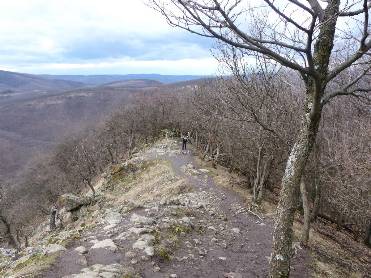 A sziklák után egy darabon csak a pengeéles, köves gerinc maradt. Balra-jobbra a mély szakadékok még itt is megvannak.
