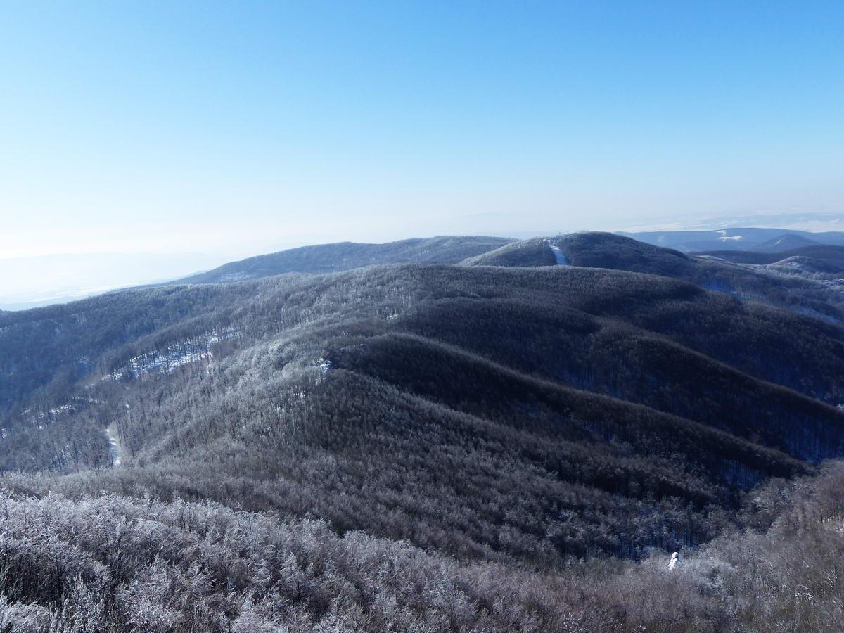 Kilátás a Csóványosról a Nagy-Hideg-hegyig vezető hepehupás gerincre. A távolban jól látható a Nagy-Hideg-hegy északi sípályája.