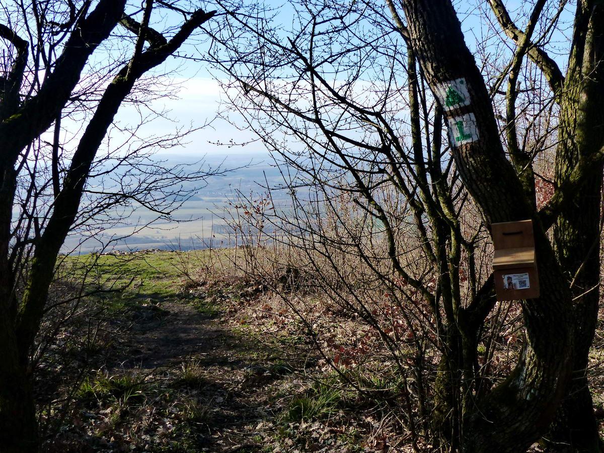 A rövid zöld háromszög jelzésű ösvény végén feltűnik előttünk a kilátópont. Az egyik fára egy túramozgalom pecsétjének dobozkája van felszerelve.