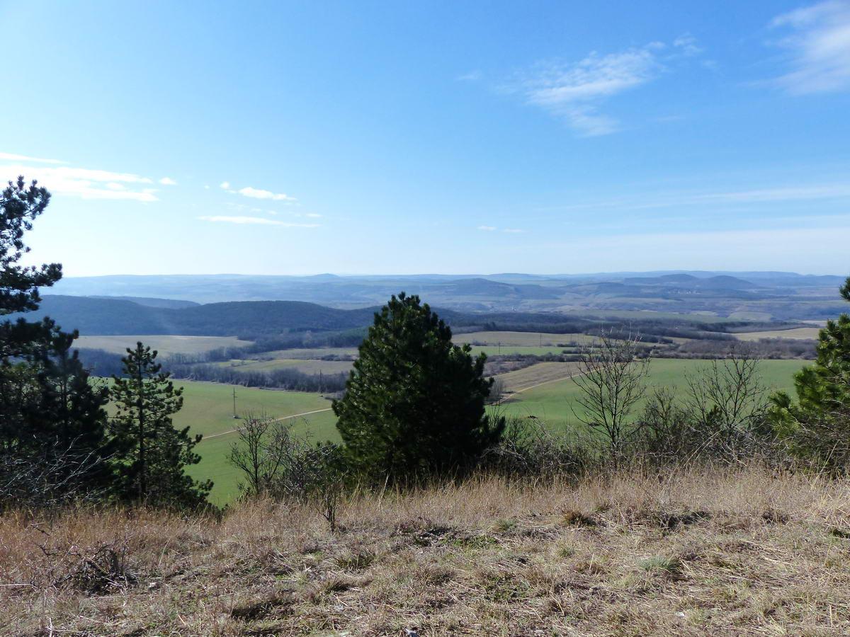 A Gete-hegy ligetes oldalából szép kilátás nyílik a Gerecse dombvilágára