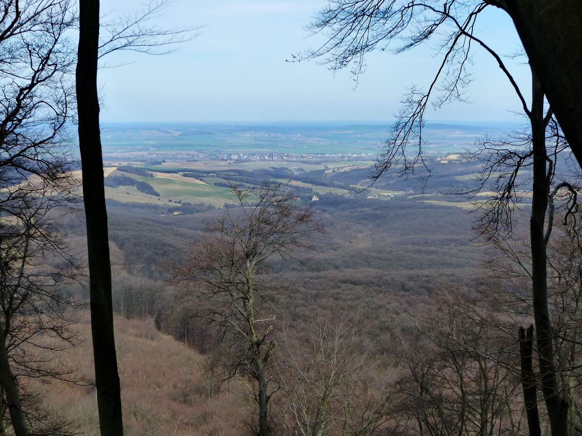 Kilátás a fák között észak felé a Gerecse oldalából