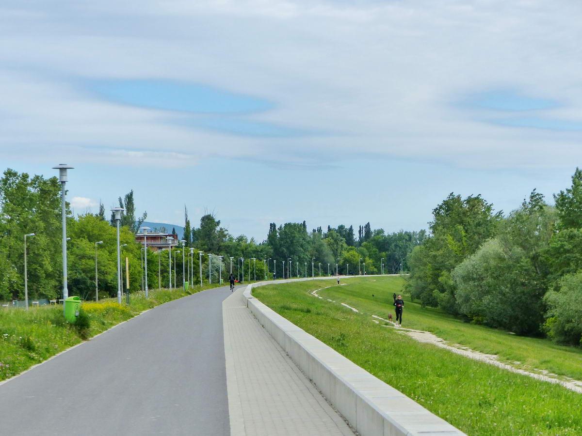 Kitűnő kerékpáros út vezet a Római-part után a Duna árvízvédelmi töltésének koronáján