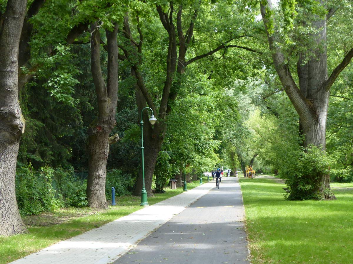 Leányfalu sétányán vezet végig a kerékpárút