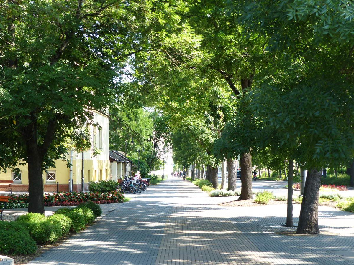 Szép gyalogos-kerékpáros sétány Nagykőrös belvárosában