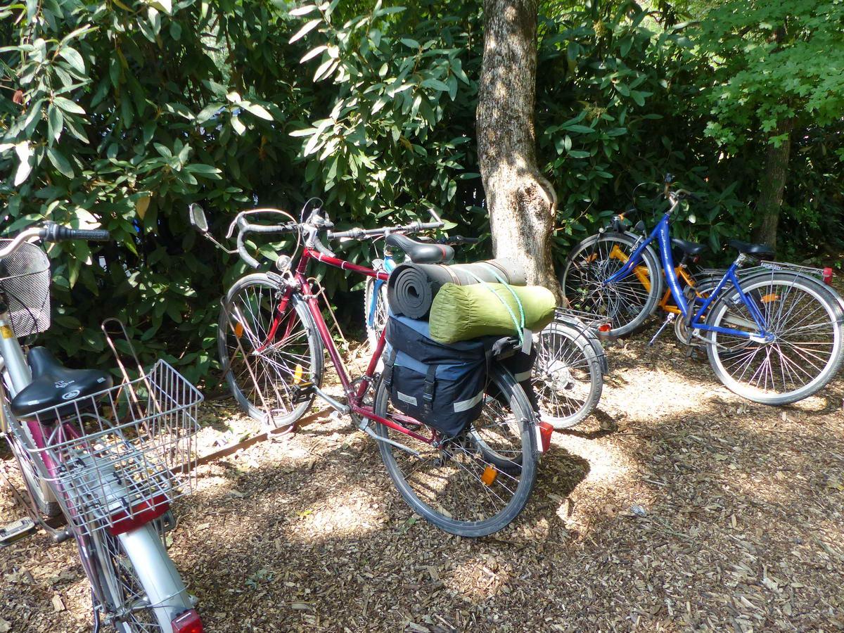 Kipányvázva várakozik a kerékpár a Szarvasi Arborétum főkapuja előtt