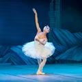 Ismerkedés a balett világával a Hattyúk taván keresztül