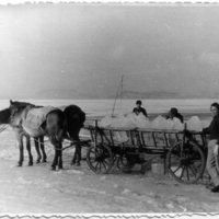 Talált kincs: jégvágók, 1954