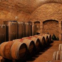 Csatlakozz hozzánk borért, most