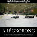 A jégkorong