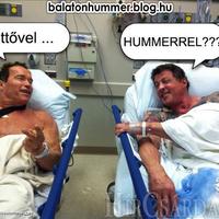 Arnold és Sly