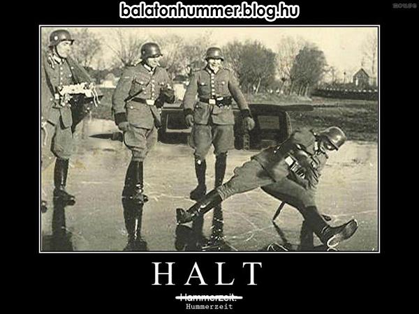 Halt - Hummerzeit