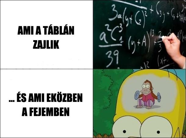 matematika idézetek vicces Mindig csak a matek   Balerina Galeri