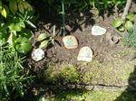 Több fűszer-jelölő-kő együtt a kertben