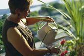 Növények locsolása
