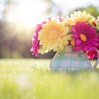 Jön a Virágot egy mosolyért! nap