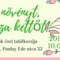HOZZ EGY NÖVÉNYT, VIGYÉL HAZA KETTŐT! - Balkonada blog találkozó