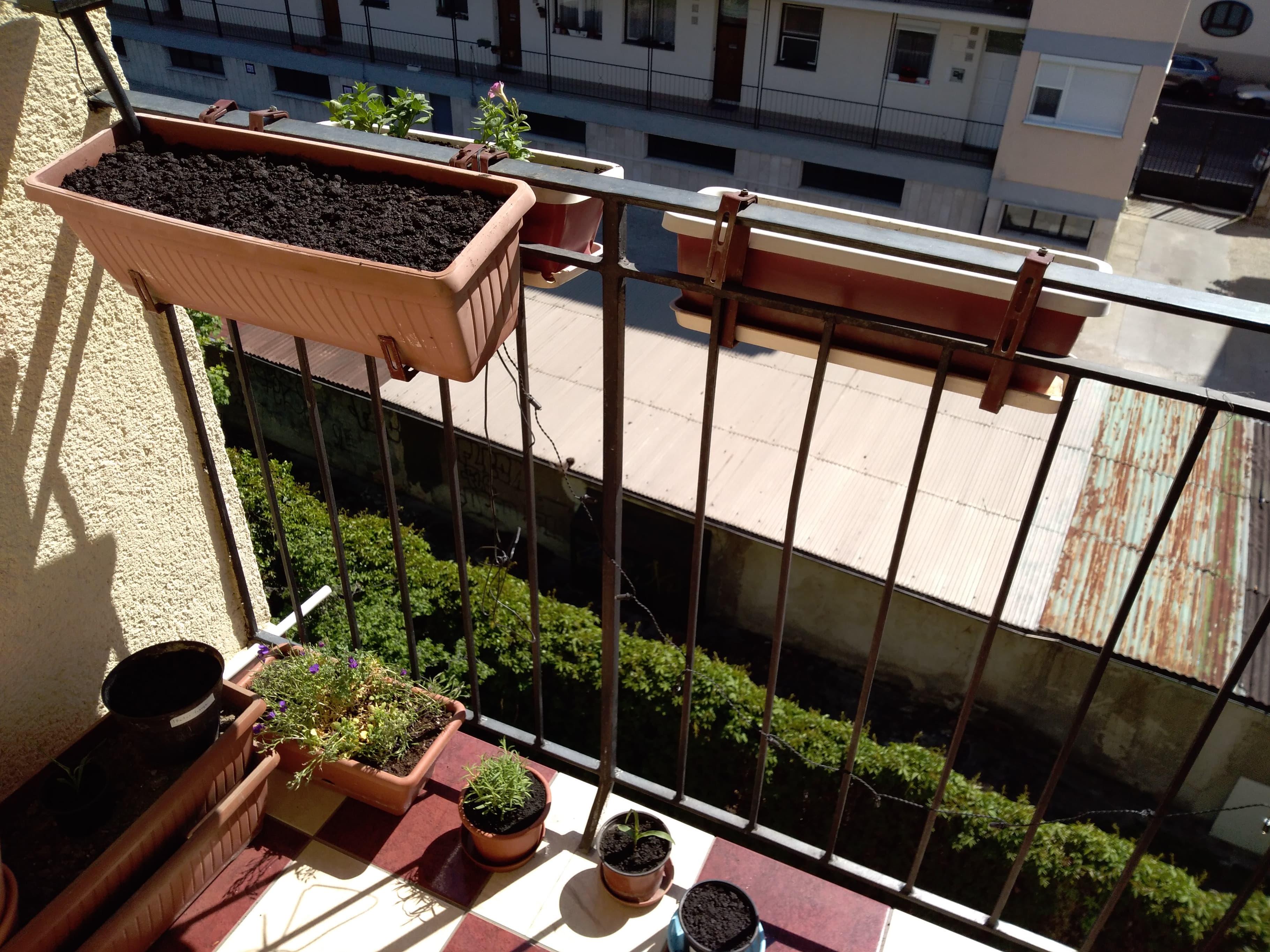 Erkélyzöldítő projekt – Dávid pompás napsütötte erkélye