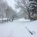 Bálványosi hó