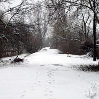 2009. évi első hó