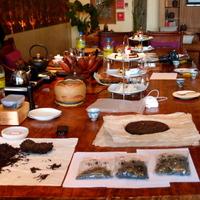 A Jinuo hegyi öreg teafa liget az édenkert egyik prototípusa