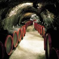 Ha kedveled a jó bort vagy a whiskey-t, akkor a puerh is a te italod lesz...
