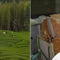 Taiwan, a világ tech design központja a tea termesztés Napa-völgyévé fejlődött