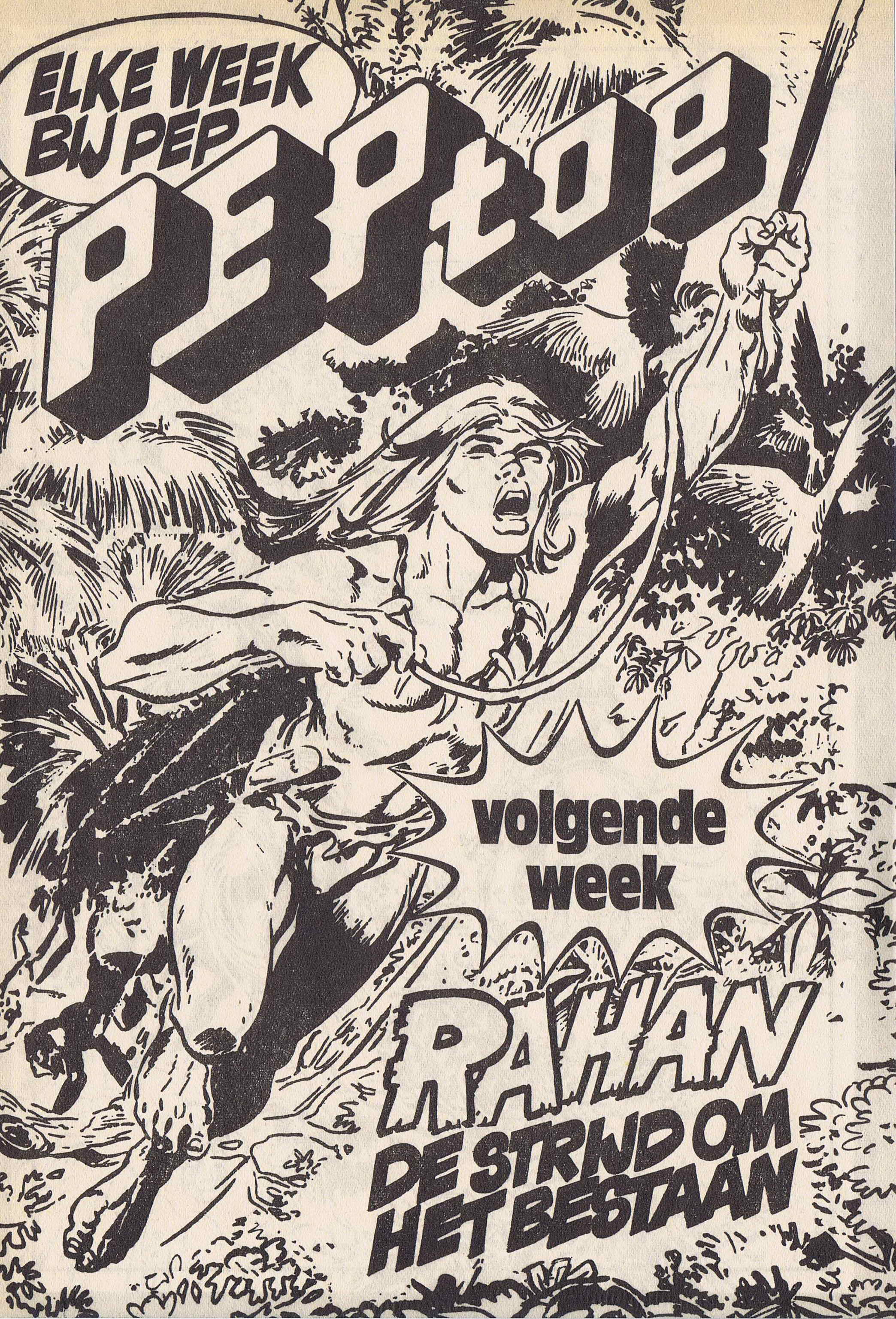 peptoe_1974-22_comanche_de_samenzwering_19.jpg
