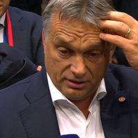 Orbán Viktor gyáva, és most szétrúgták ezért a seggét.
