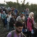 Ahogy a Fidesz nem szeretné hogy lásd a menekülteket!