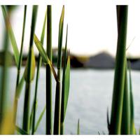 húsvét hétfő, papa-tónál, mint mindig