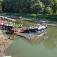 Rekordalacsony vízállás Nagymaroson és Kismaroson