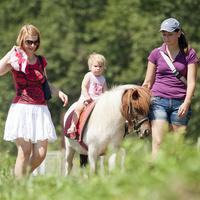 Lánykák lovon s tánc közben