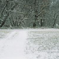 Ha hó, akkor hó