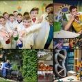 15 gyerekbarát múzeum Magyarországon
