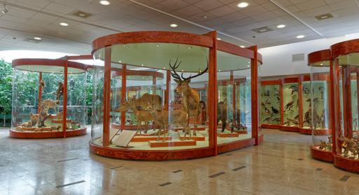 matra_muzeum.jpg