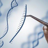 Génmódosított embergyerekek születhettek Kínában